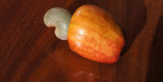 fruits3